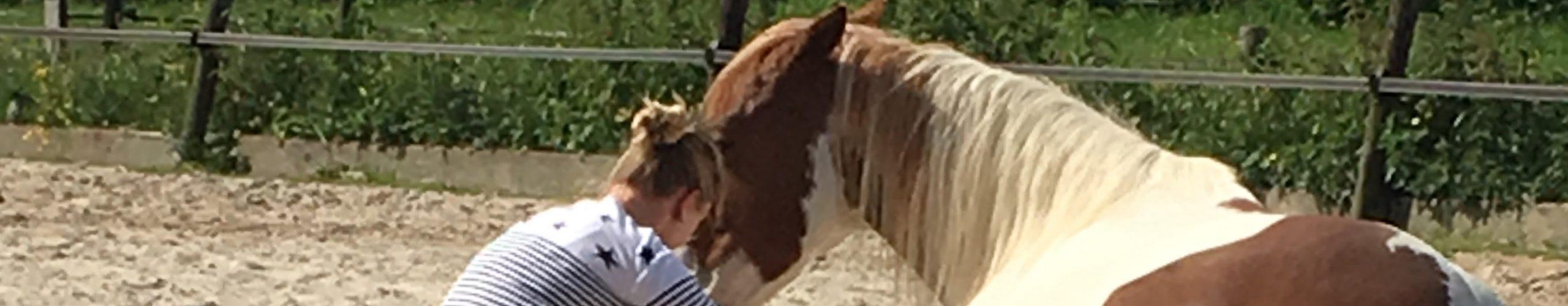 Spegelwurk – coaching met paarden